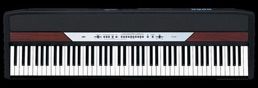 piano numérique korg sp250 - Studio Luna Rossa